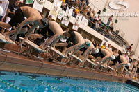FrankJansky.com - Swimming & Diving